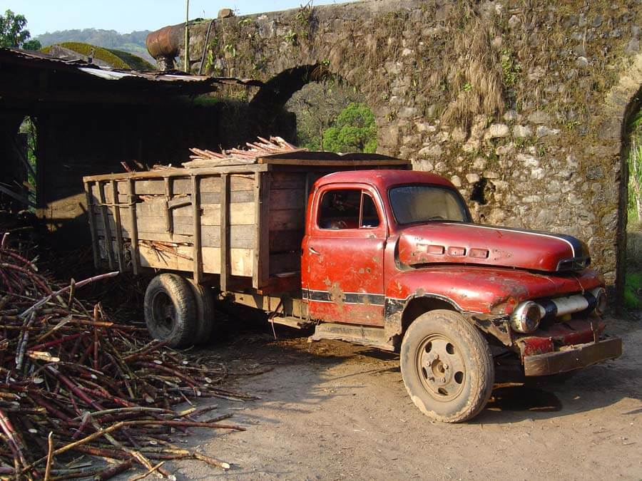 Camion pour transporter la canne