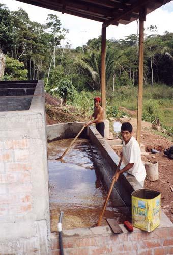 Crisanto et Carlos au lavage des grains de café