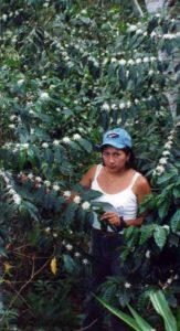 Jenny avec une plante en fleur