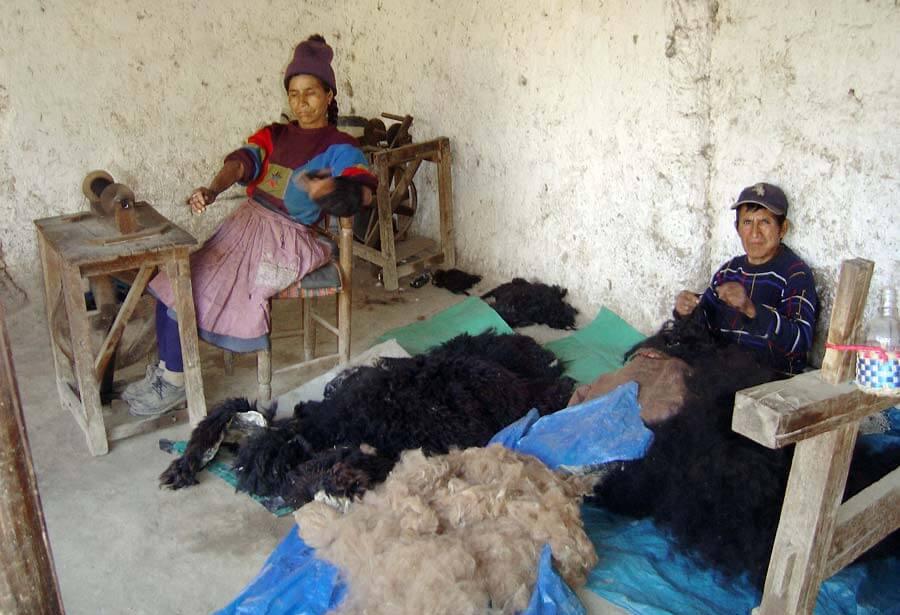 Sélection de la laine et filage